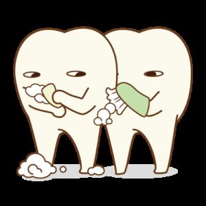 プラーク 除去 歯