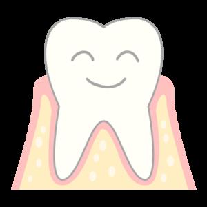 歯周病のメカニズム 健康