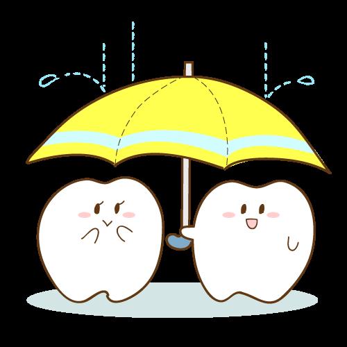 知っていますか?歯の構造のイメージ