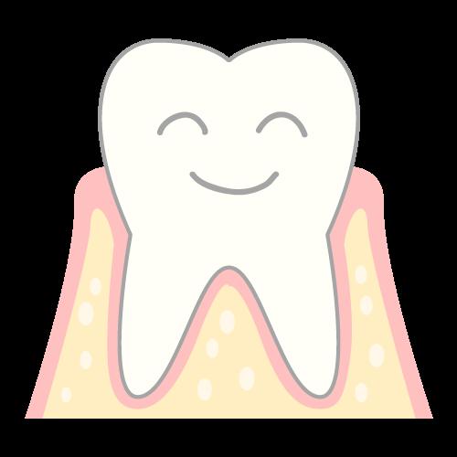 健康な歯茎とは?のイメージ