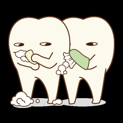 双子みたいな歯 パート2のイメージ
